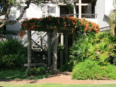 A lush tropical setting greets you at the condo entrance!