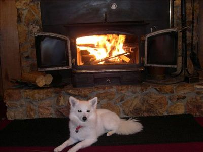 Fireplace (puppy not included ;-)