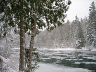 Stevens Pass cabin photo - View of river from deck in snowy winter