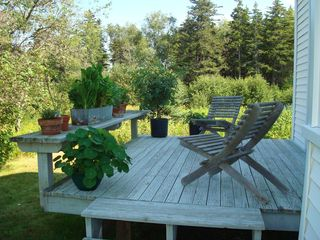 Cranberry Isles house photo - Garden Porch