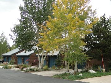 View of our 7 Unit Townhome- Beautiful Flower Beds and Aspen Trees