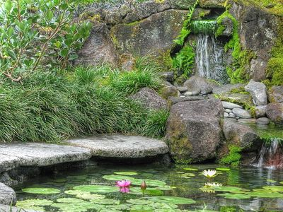 Relax to waterfall cascading down natural rock into stream and pond