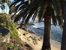 Break-taking views a short walk away - Laguna Beach studio vacation rental photo