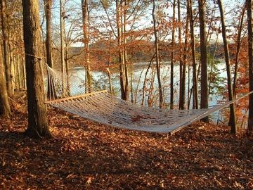 Hammock Overlooking the Lake