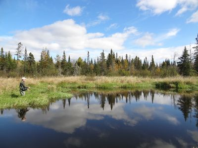 Flyfishing along the Sucker River on a Beaver Pond at Namebini