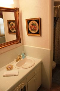 Designer Guest bathroom -Powder room