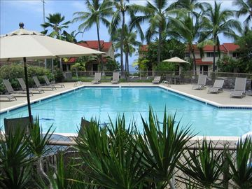 Keauhou condo rental - Wonderful pool with ocean view...1-3 foot shallow end is great for kids!