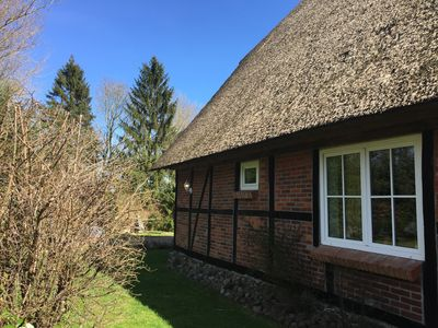 Nature and tranquility - in the thatched thatched farmhouse with large garden - Laube