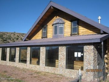 Alpine cabin rental - Beautiful Authentic Cabin with 2 sided AZ room facing mountain views