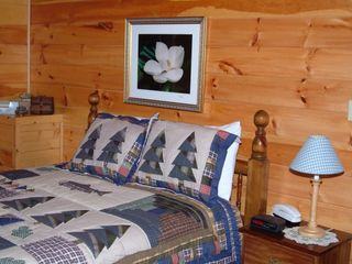 Wears Valley cabin photo - Master bedroom downstairs has a queen size bed, T.V. DVD and full size bathroom.