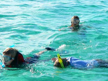 Kids love snorkeling for starfish and sand dollars.
