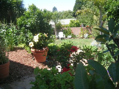 & a peek at the back yard with citrus trees, berries & herb garden along the way