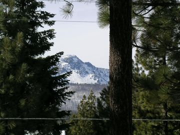 View of Mt Tallac from our home