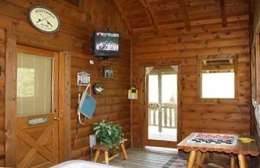 Screened in Porch with TV and Log Picnic Table