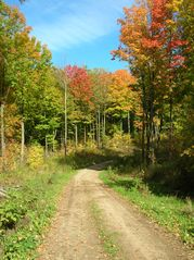Crandon cabin photo - Beautiful fall colors!