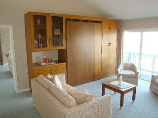 Petoskey condo photo - Master bedroom suite with murphy style bed and view of bay