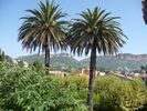 APPARTEMENT - Cassis - 2 chambres - 4 personnes