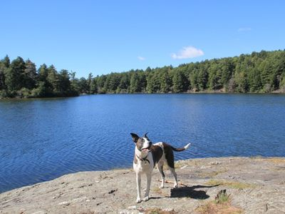 Hillsdale cottage rental - Nearby Guilder Pond