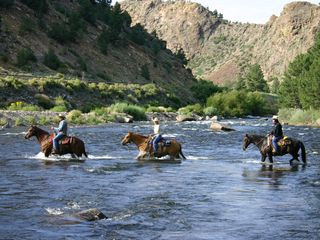 How about some horse back riding? - Salida condo vacation rental photo
