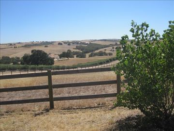 Paso Robles chateau / country house rental - View from driveway