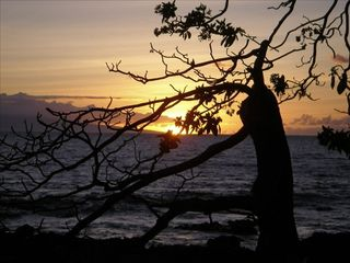 Kihei condo photo - A Walk in the Sunset, Kihei