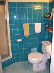 Greenwich Village condo photo - Second Bathroom with shower
