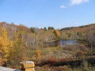 West Wardsboro house photo - ...and affords a marvelous view of the beaver pond where wildlife abounds.