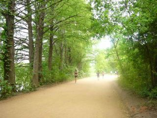 Austin house photo - Run, Bike, or Hike Lady Bird Lake Trail. Just 2 blocks from the house.