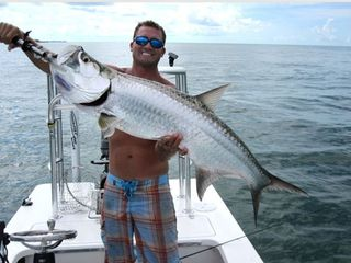Marathon condo photo - Tarpon caught by bridge