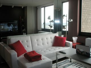 Financial District condo photo - The queen sofa bed