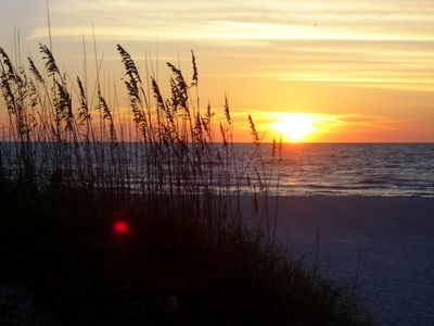 Sunset between the sea oats