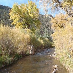 Fall time in the Jemez River Valley.