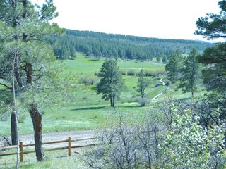 Pagosa Springs cabin photo - View from front of property facing road