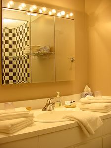 Chicago house rental - Midsize and Standard Size Bedroom Bathrooms Vanity
