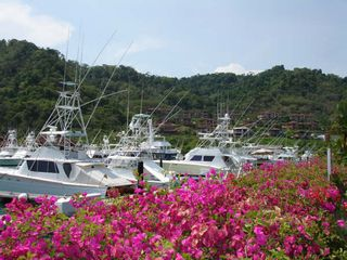 Jaco condo photo - Los Suenos Fishing Charters