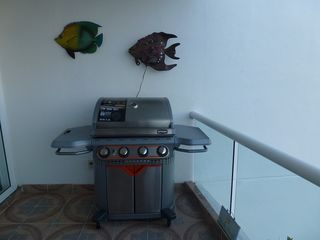 Nuevo Vallarta condo photo - Nice BBQ for your outdoor cooking