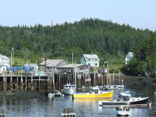 Cutler house photo - Lobster boats at low tide in Cutler Harbor