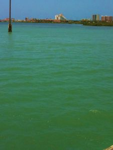South Padre Island condo rental - The view comming into th3 Island