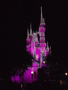 Cinderella castle at Disney at Christmas only a bit of an hour away from us!