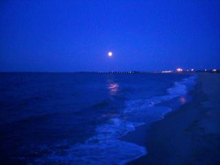 Lewes condo photo - Moonlight walks on Lewes Beach