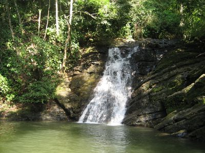 A local waterfall with many more to choose from