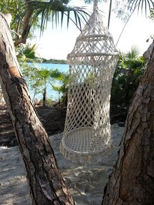 Relaxing Single Swing Princess Hammock By The Water