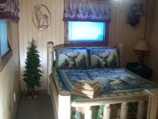 Cosby cabin photo - Bedroom 2