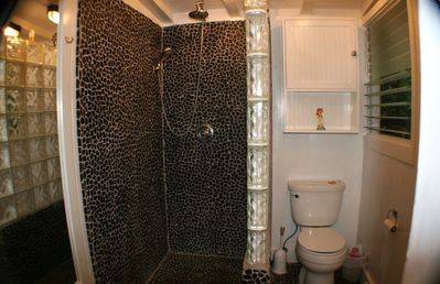 Lava rock glass block rain shower