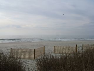 Cherry Grove Beach condo photo - View from deck (25 steps to beach from your living room door)