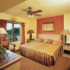 Lake Buena Vista condo photo - Bedroom