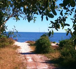 Jekyll Island cottage photo - Private beach trail from the house. Beach is less that 50 yards from front door