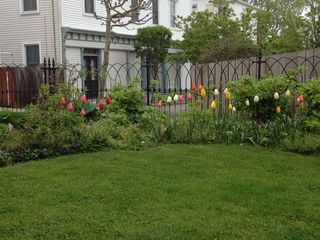 Stonington house photo - garden in the spring