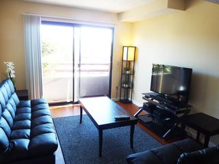 Silver Lake apartment photo - .