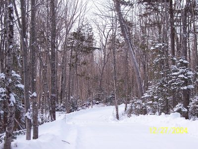 Brassua Lake house rental - Winter wonderland